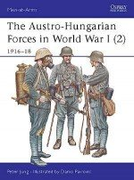 The Austro-Hungarian Forces in World War I (2)